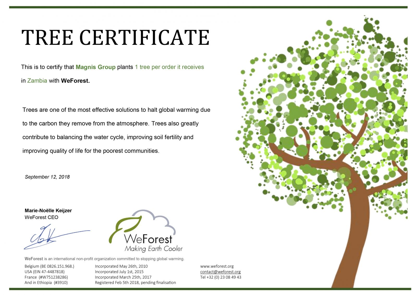 Our WeForest certificate