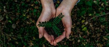Klio Eco: balpennen van bioplastic en gerecycleerd plastic