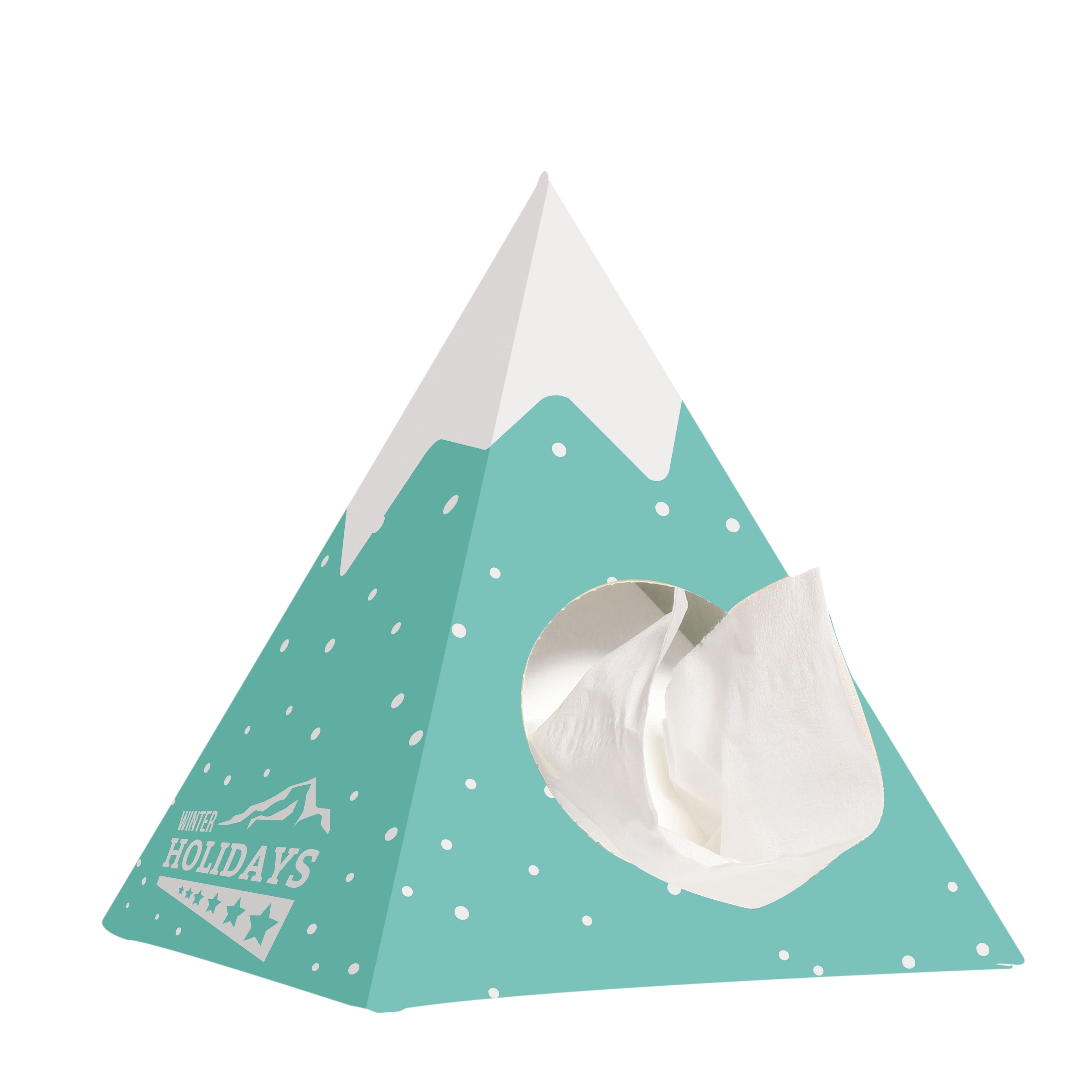 Care & More pyramid tissue box