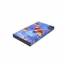 DN White Lake Pro External SSD 480 GB