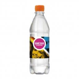 Drinks & More bronwater 500 ml met draaidop